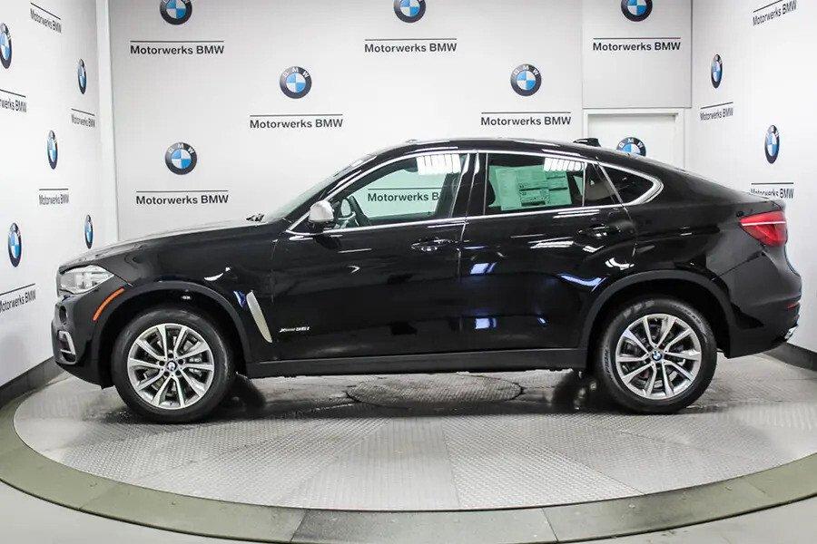 BMW X6 xDrive 35i (Máy xăng) - Hình 7