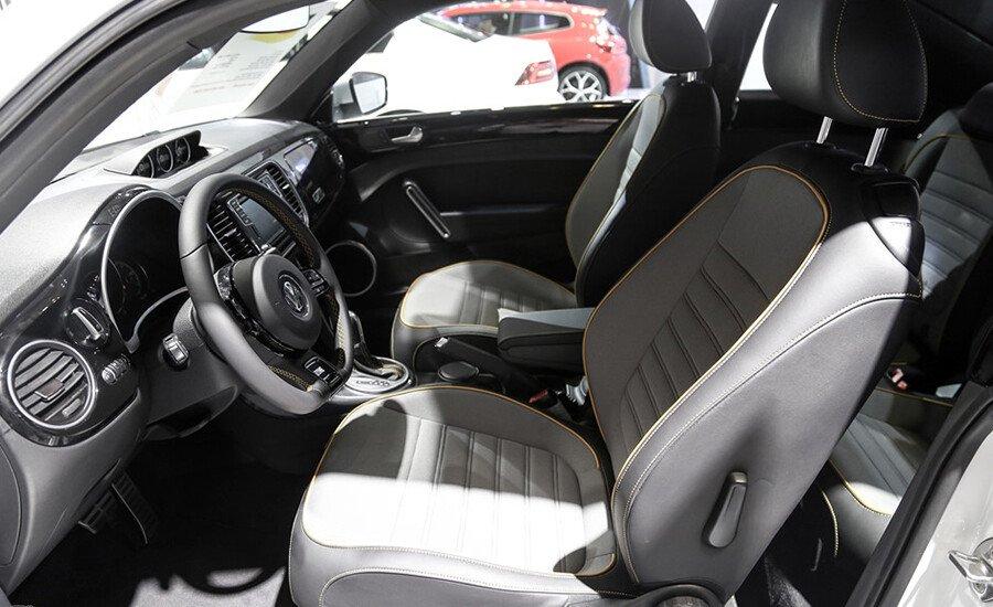 Volkswagen Beetle Dune 2.0L - Hình 11